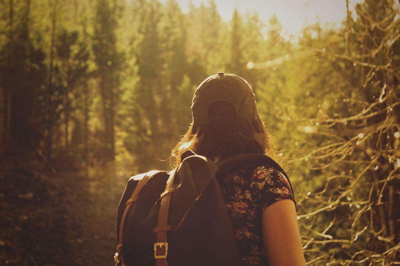 Ude i skoven